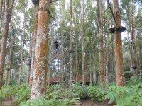 Bali TreeTop Adventure