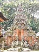 Bali Monkey Sanctuary