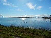 2015_March_coastalLatina1