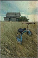 2015_December_tricycle