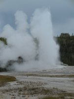 Old Faithful, Yellowstone, US