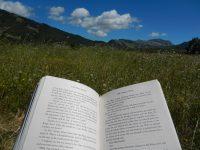 Abruzzo reading
