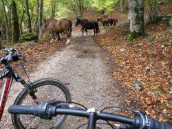Ovindoli biking, Abruzzo