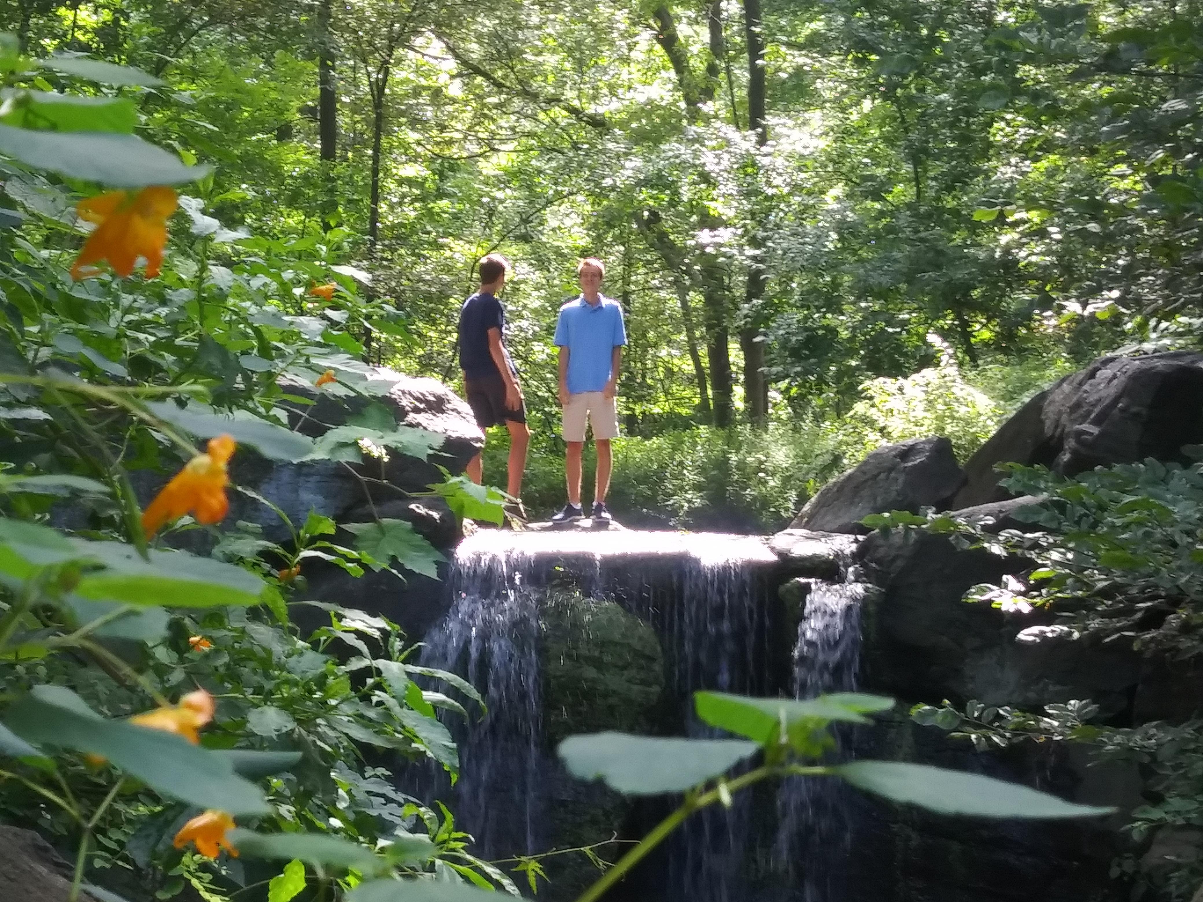 North Woods, Central Park, New York/ Kimberly Sullivan