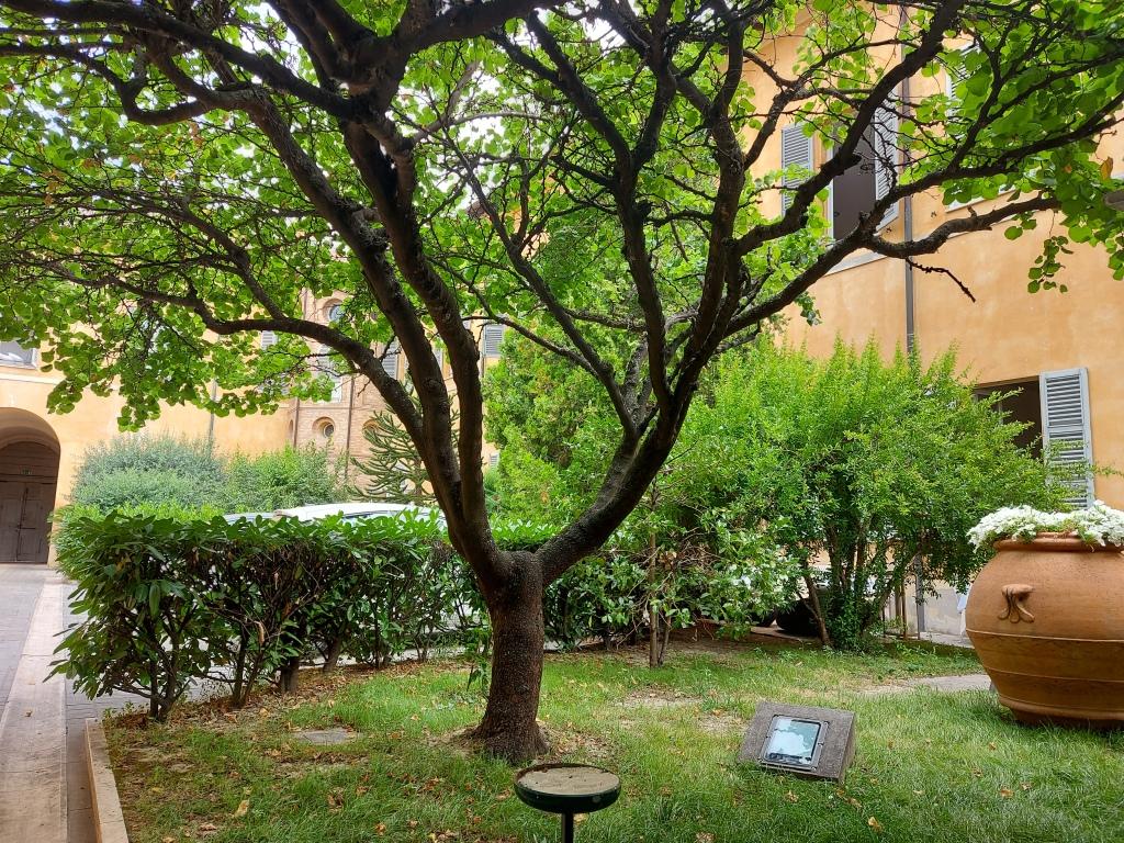 Ravenna, Italy/ Kimberly Sullivan